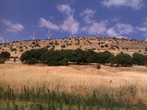 Blåsigt på Golan